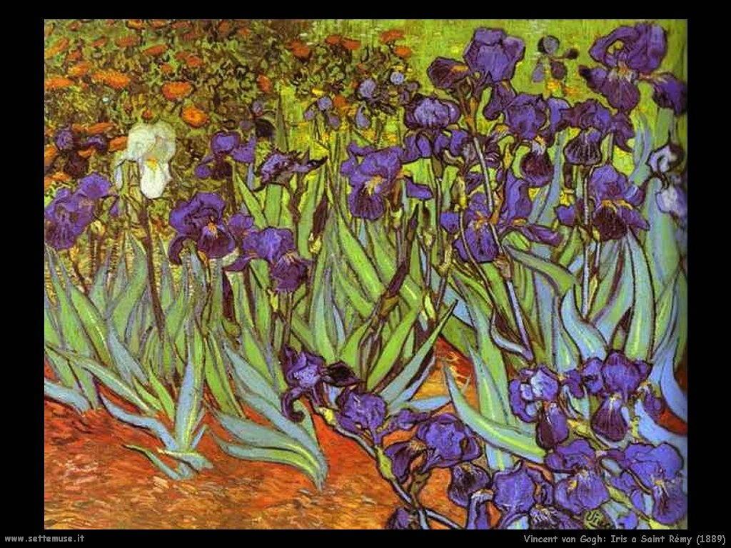 Vincent van Gogh_iris_a_saint_rémy_1889