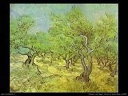 166_uliveto_saint_rémy_1889