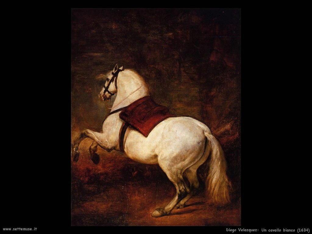 Diego Velà¡zquez_un_cavallo_bianco_1634