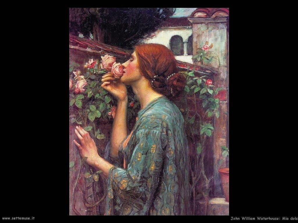 Mia dolce rosa (1903)