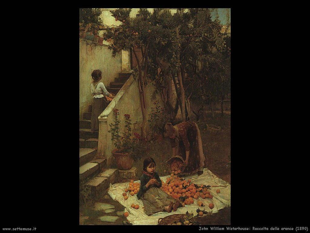061_raccolta_delle_arance_1890