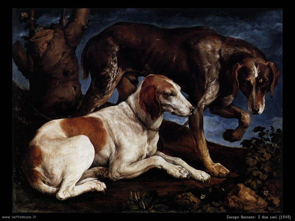 Due cani (1548)