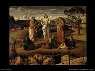 bellini giovanni Trasfigurazione di Cristo
