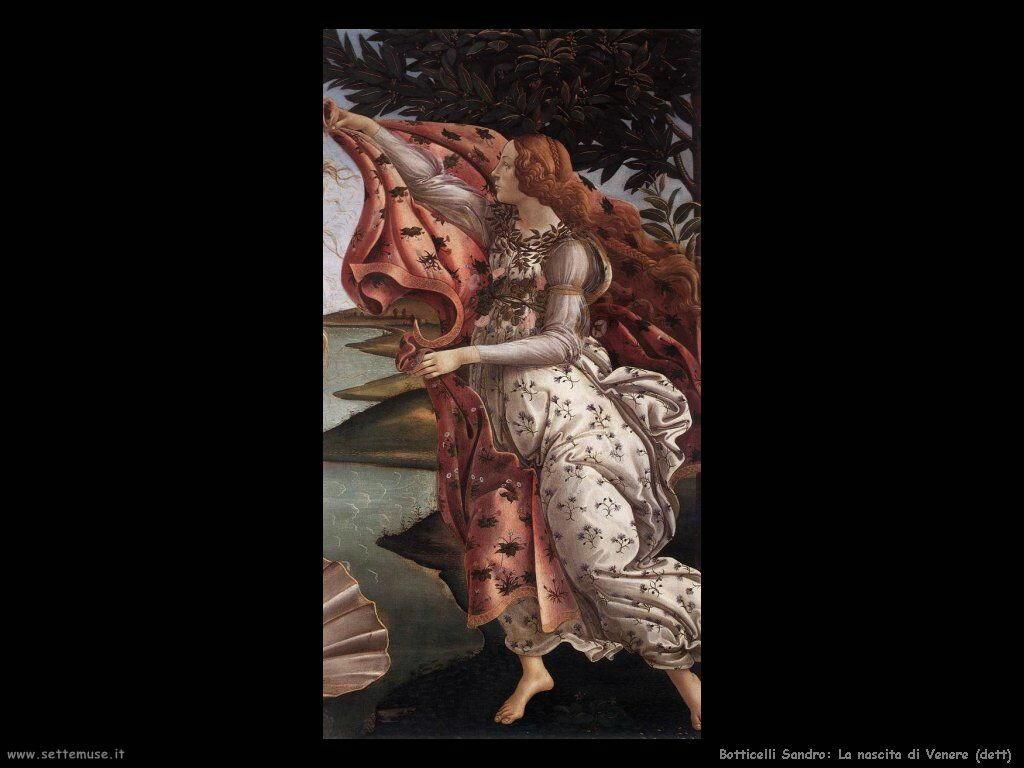 sandro botticelli nascita di venere 591