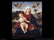 carpaccio Madonna col figlio benedetto (1505)