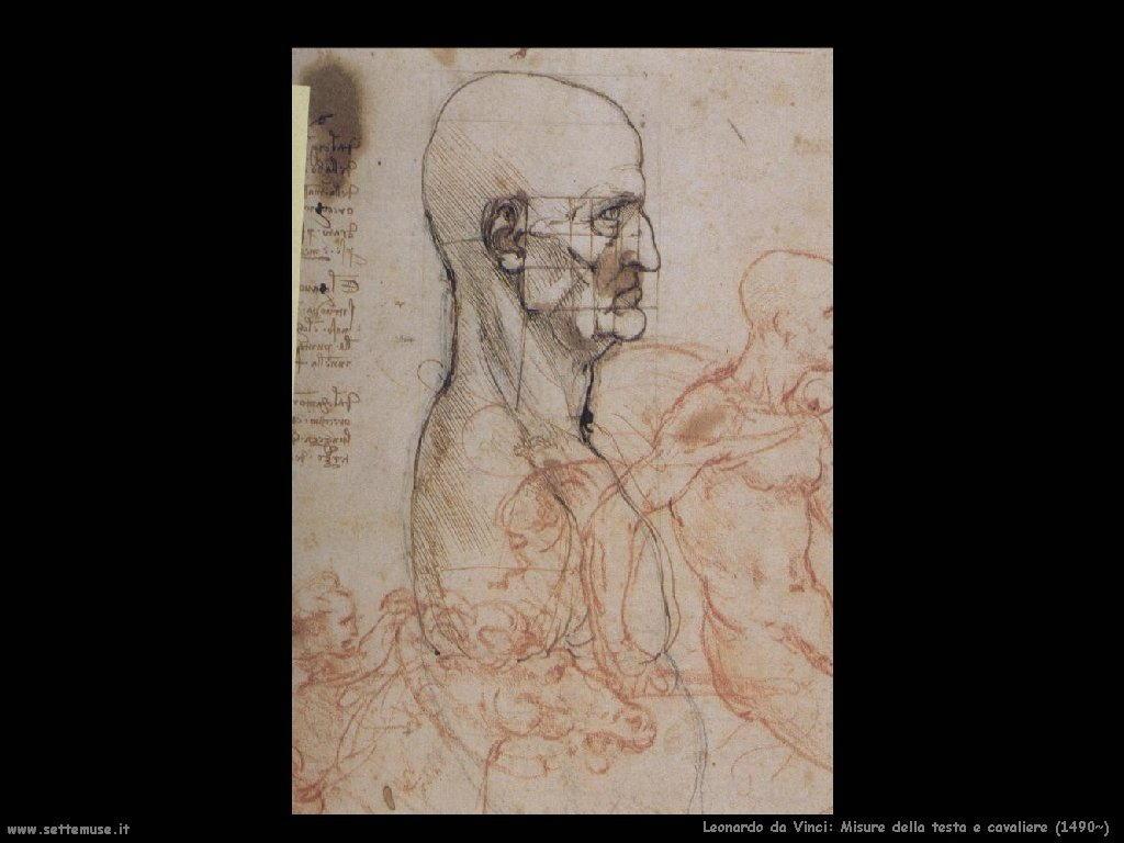 Misure della testa e cavaliere (1490)