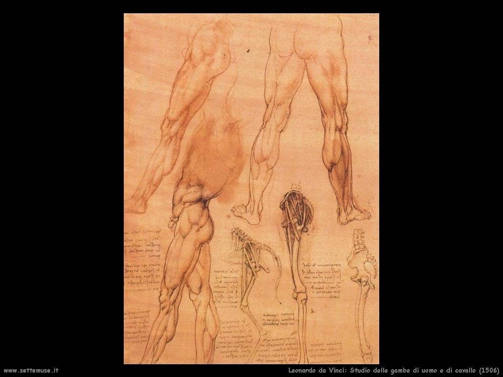 Studio delle gambe d'uomo e di cavallo (1506)