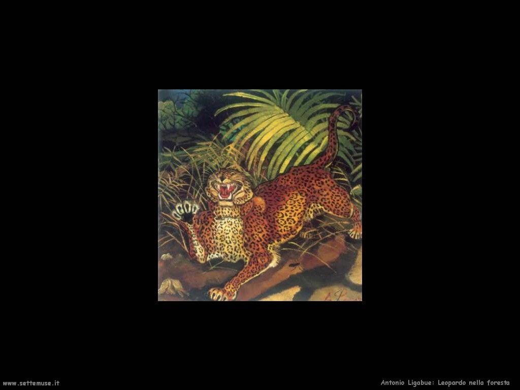 Leopardo nella foresta