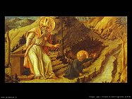 filippo lippi Visione di Sant'Agostino (1450)