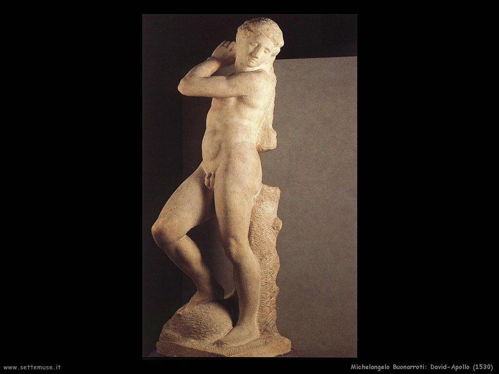 Michelangelo David-Apollo