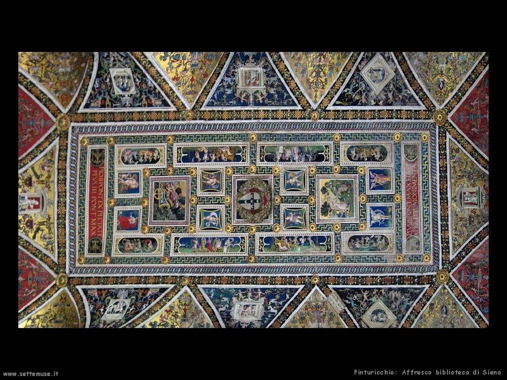 Biblioteca di Siena