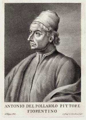Antonio del pollaiolo biografia
