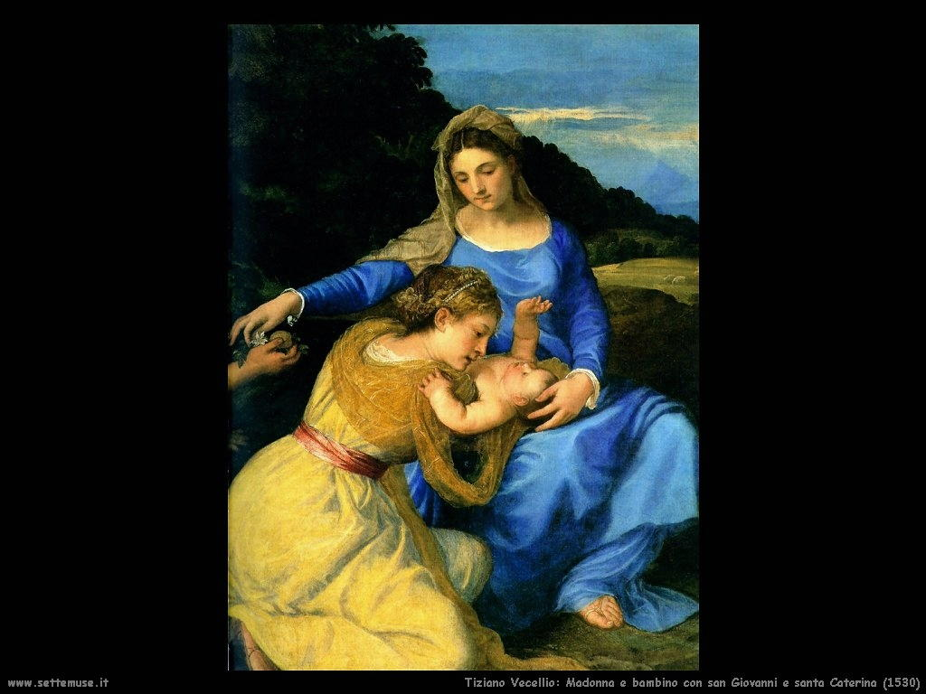 Madonna col bambino dett.(1530)