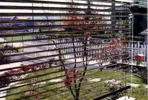 Dal balcone del mio ufficio