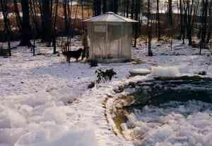 Inverno 1985: 15° sotto zero!
