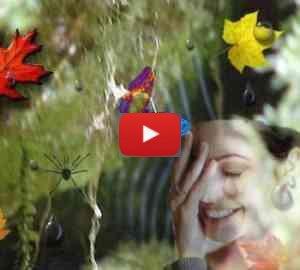 Enrico Riccardo Spelta - Il mio autunno