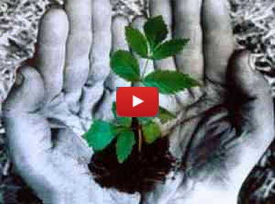 Enrico Riccardo Spelta - Odori di vita
