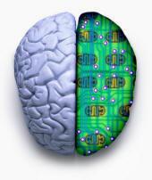 Rete neuronale connessa a rete internet