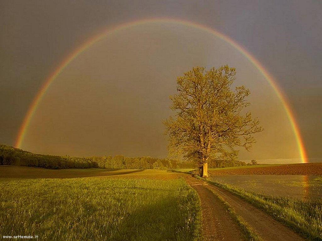 Sfondi desktop di arcobaleni 031