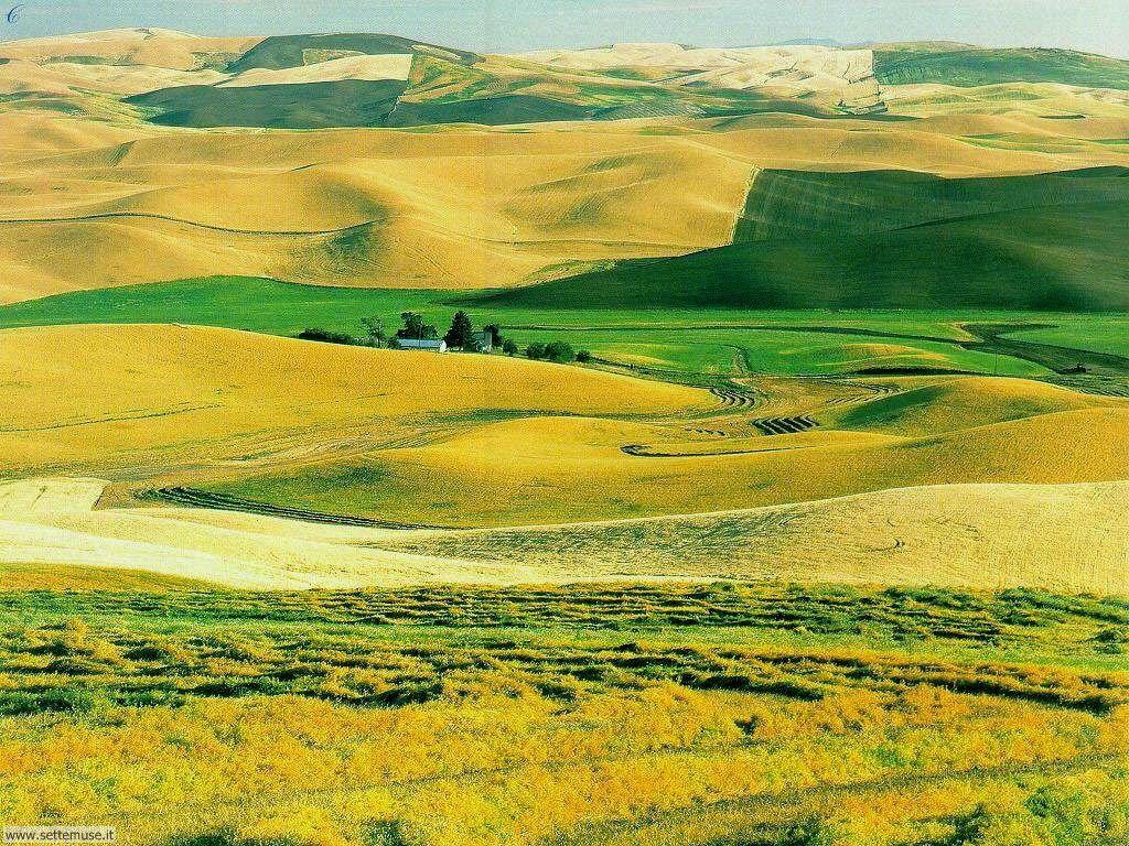 foto di campi e campagna per sfondi