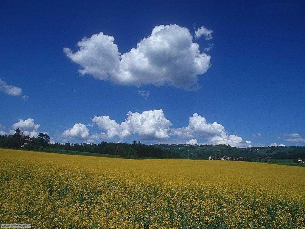 Foto desktop di cieli e nuvole 032