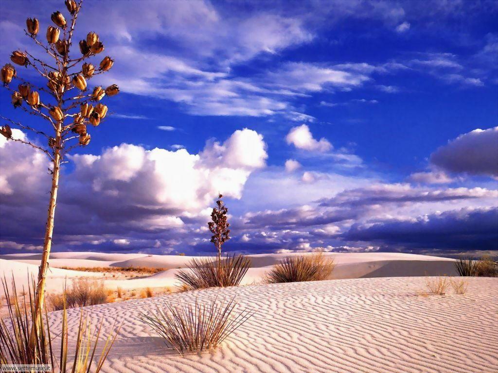 Foto desktop di deserti e canyon 001