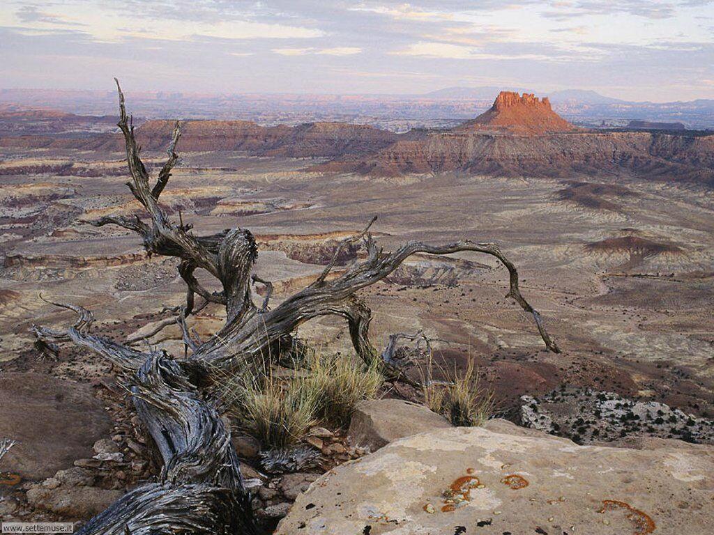 Foto desktop di deserti e canyon 013