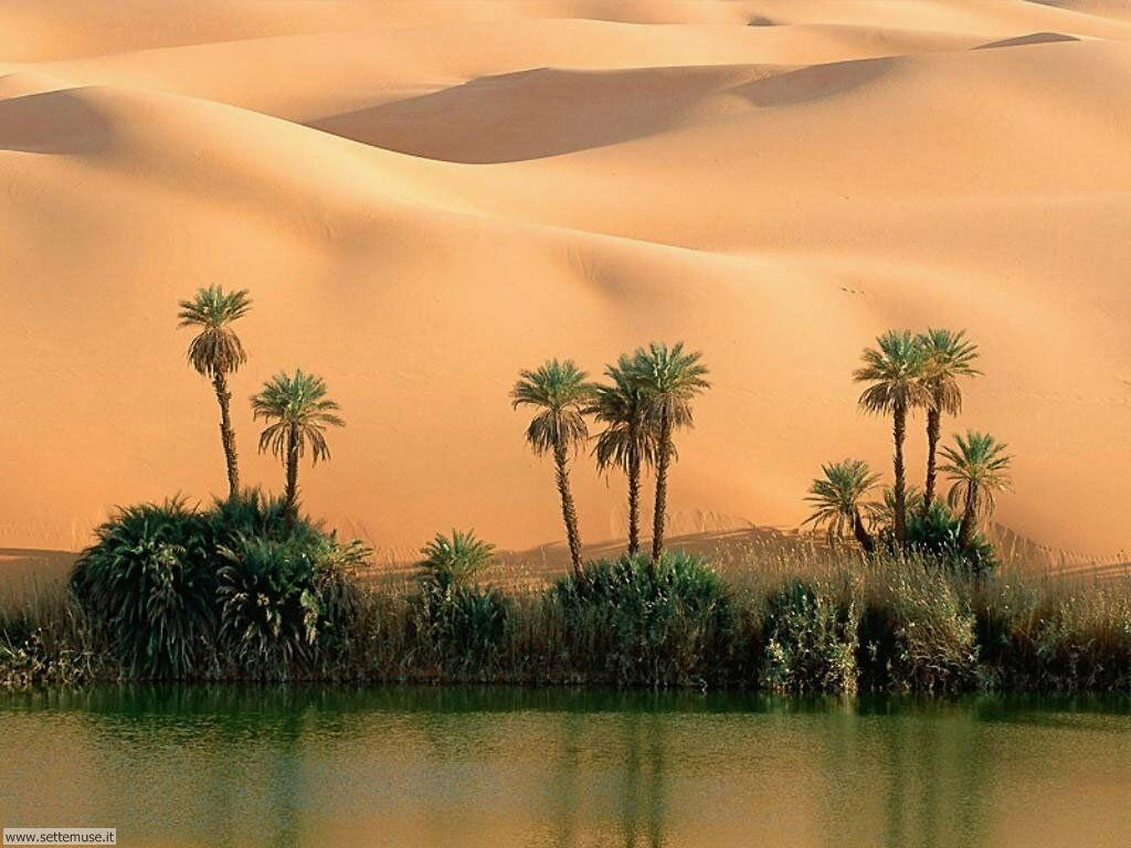 Foto desktop di deserti e canyon 019