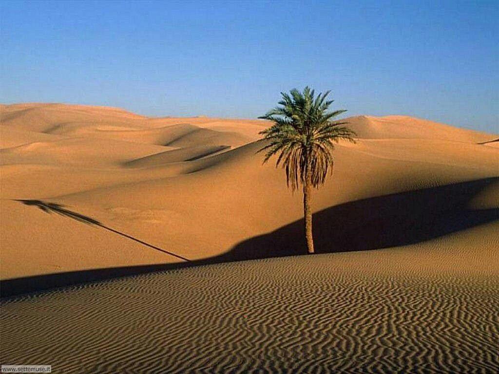 Foto desktop di deserti e canyon 026