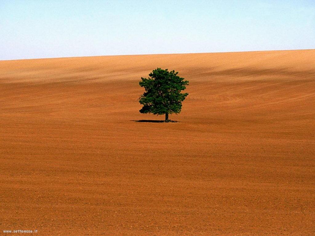 Foto desktop di deserti e canyon 045