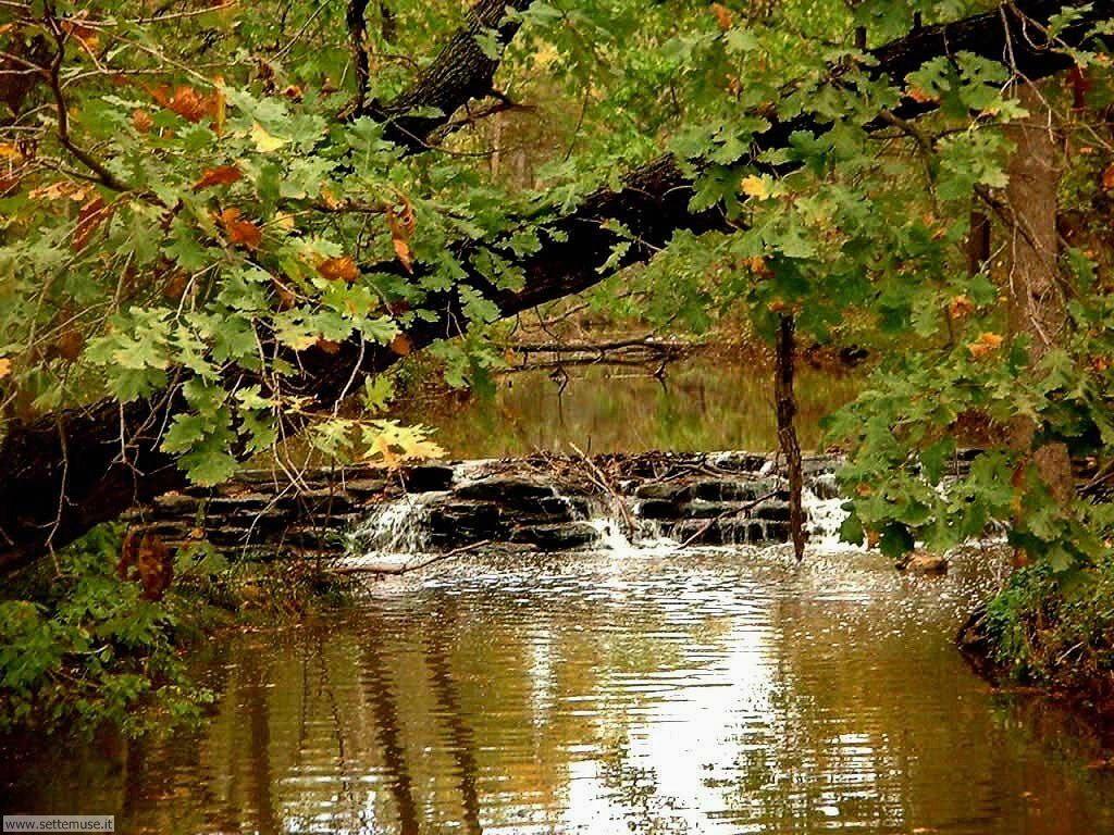 Foto desktop di fiumi e torrenti 008