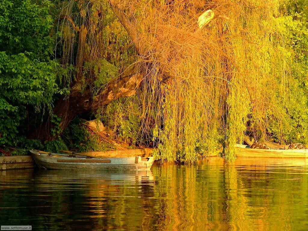 Foto desktop di fiumi e torrenti 038