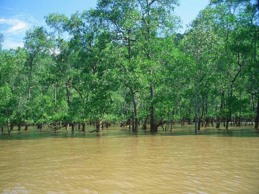 Foto desktop di fiumi e torrenti 060