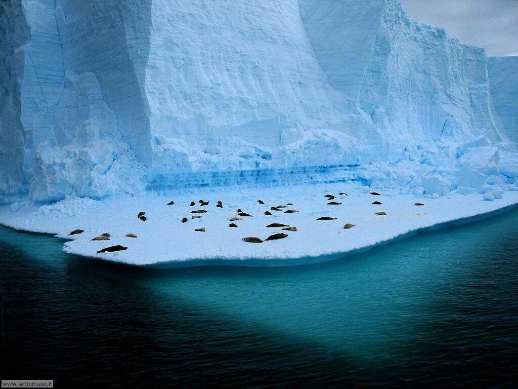 Foto desktop di ghiacci e iceberg 020