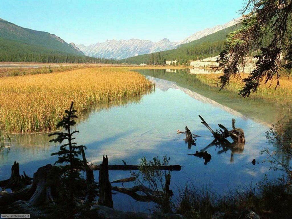 Foto laghi per sfondi desktop for Disegni di laghi