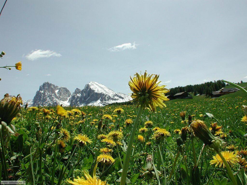 Foto desktop di montagne 067
