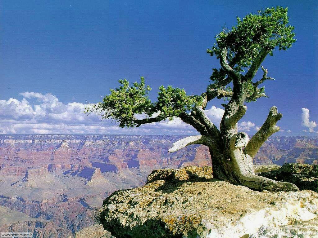 Foto desktop di montagne e cime 026