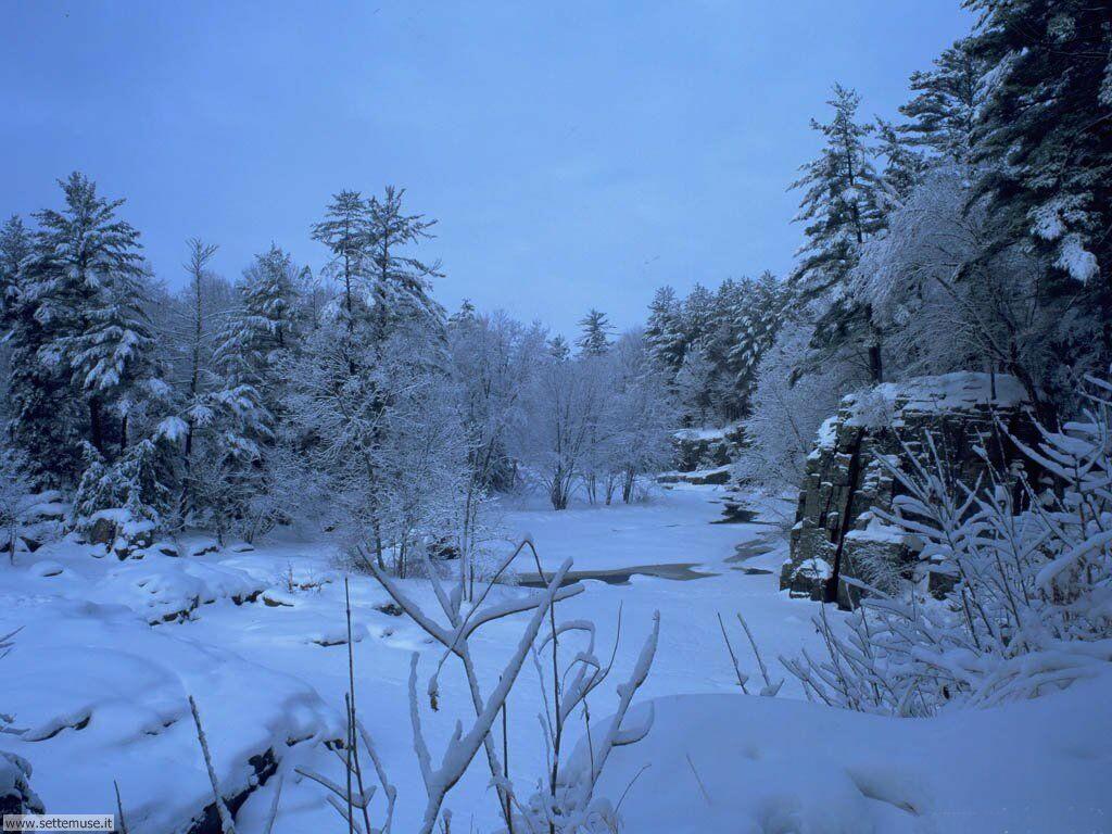 Foto desktop di neve e paesaggi innevati 006