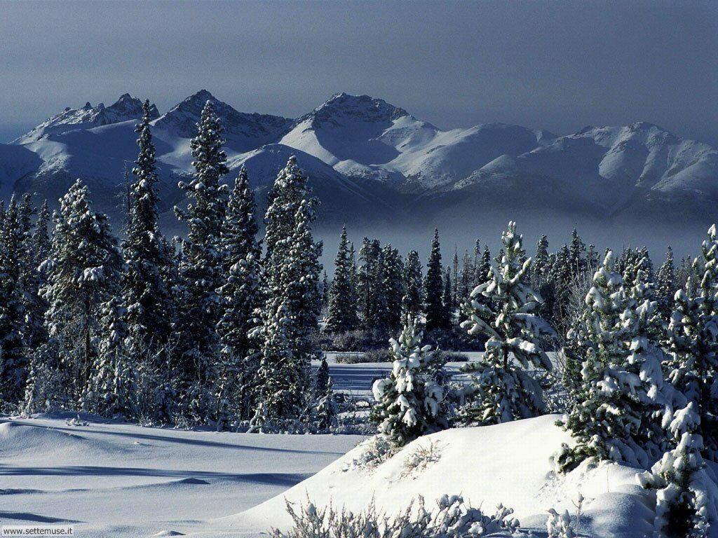 Foto desktop di neve e paesaggi innevati 010