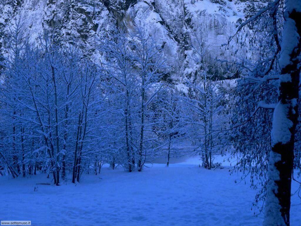 Foto desktop di neve e paesaggi innevati 014