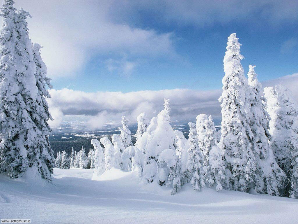 Foto neve per sfondi desktop for Paesaggi desktop