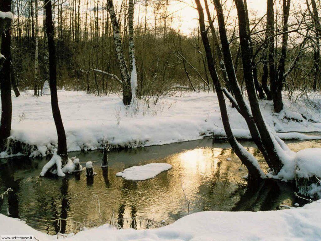 Foto desktop di neve e paesaggi innevati 017
