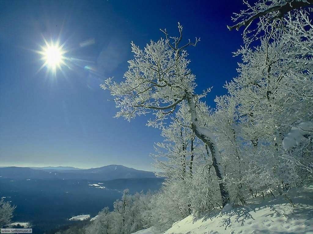 Foto neve per sfondi desktop for Paesaggi invernali per desktop