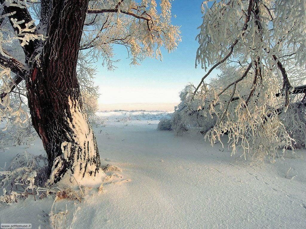 Foto neve per sfondi desktop for Sfondi desktop inverno montagna