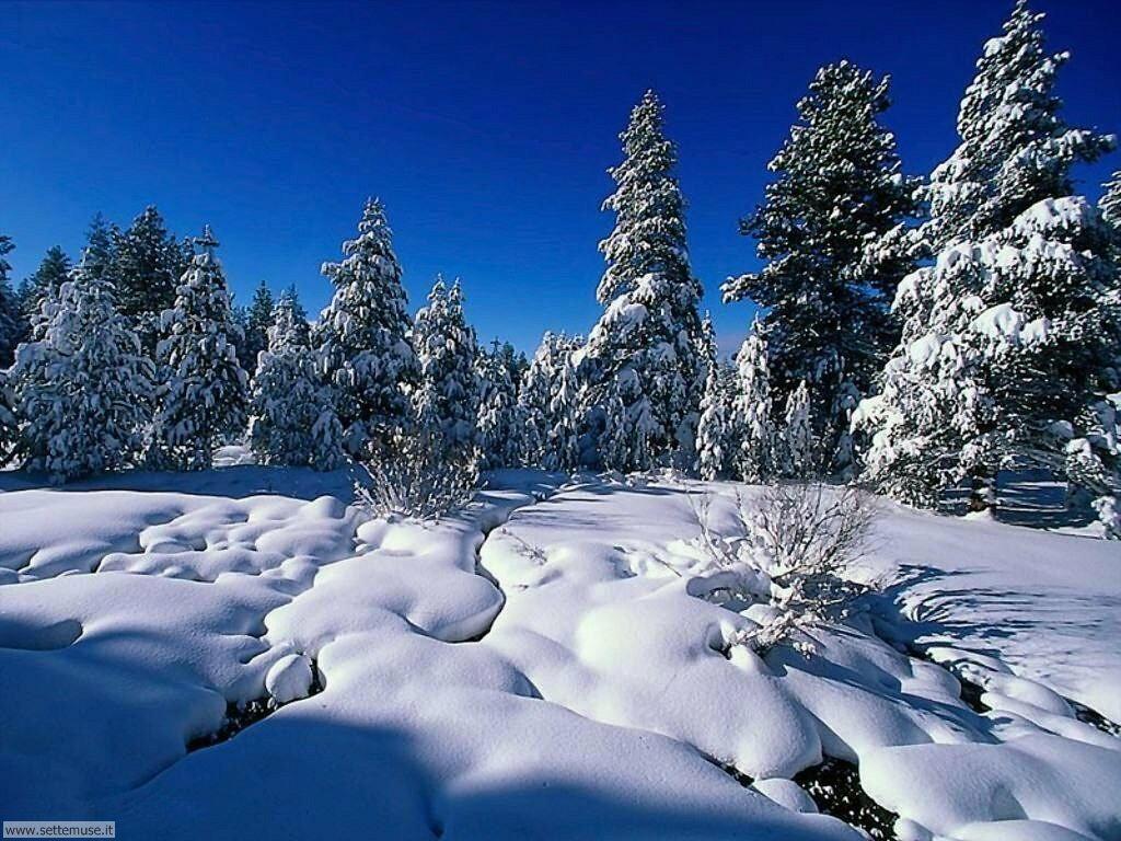 Foto desktop di neve e paesaggi innevati 021