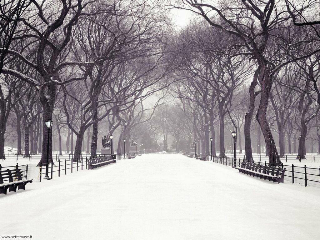 Foto desktop di neve e paesaggi innevati 023