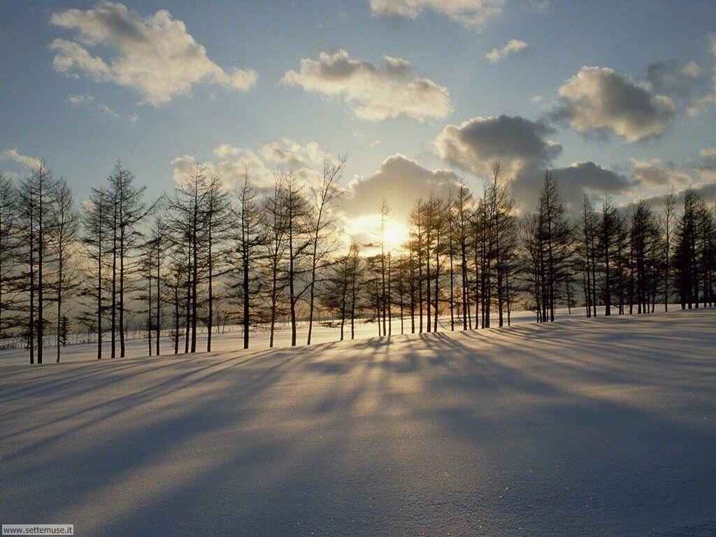 Foto desktop di neve e paesaggi innevati 024