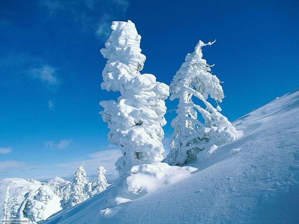 Foto desktop di neve e paesaggi innevati 028