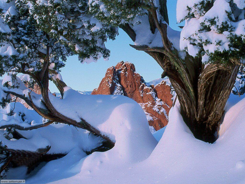 Foto desktop di neve e paesaggi innevati 040
