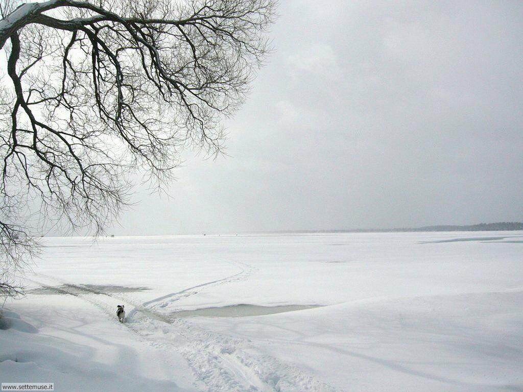 Foto desktop di neve e paesaggi innevati 048